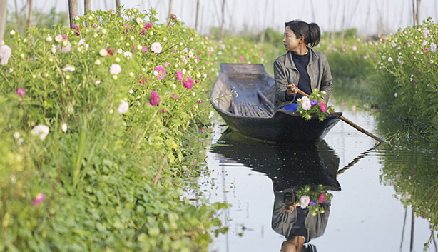 Flower floating garden - Inle lake
