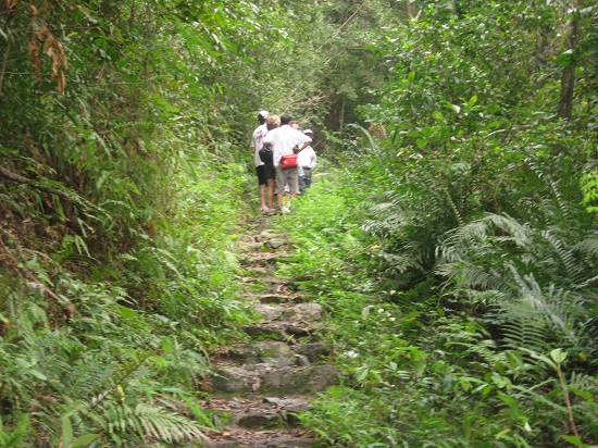 Cat ba trekking tour