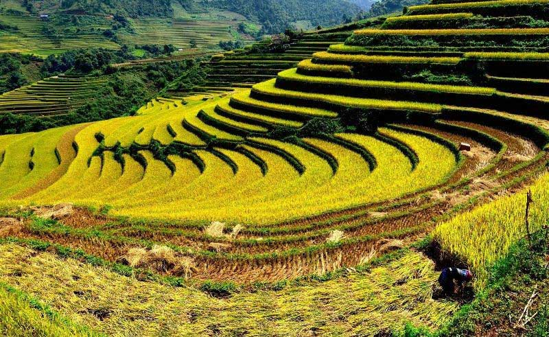 Things listed as best Vietnam travel guides to Dien Bien holidays