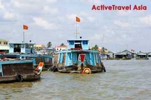 mekong delta travel information